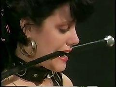 Slave Ash & The Kissy Faces