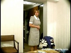 Maid, Cleaner