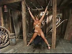 Ava Devine\s Shaved Cunt Is Tortured In Dungeon