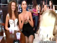 Drunk Girls Sucks Stripper Cock