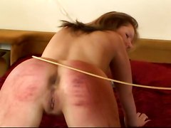 Begging For Punishment 2